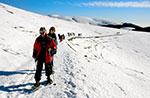 Schneeschuhwandern Sie am Mount Longara ein Zentralplateau Becken führt, 23 Marz