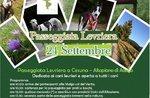Windhund zu Fuß von Malga mit Wind am Asiago Hochebene-24 September 2017