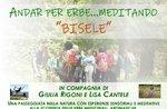 """""""Andar per erbe...meditando"""" - Escursione meditativa in località Bisele - 27 luglio 2019"""