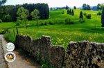 Sulle tracce dei Cimbri - Escursione guidata con Asiago Guide - 25 agosto 2020