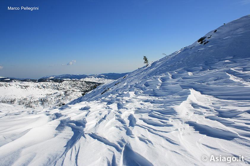 Escursione ciaspole montagna nuova con guide altopiano 19 for Altopiano asiago hotel