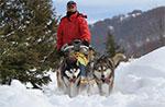 Wandern mit Huskies am 15. 16. März 2014 Val und Ant Hochebene von Asiago