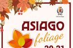 Asiago-Laub-2018-Farben und Aromen des Herbstes am Asiago Hochebene-20. / 21. Oktober 2018