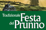 PRUNNO FESTIVAL-traditionelles fest und Feuerwerk in Asiago, 16. August 2017