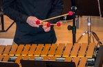 Concerto di percussioni marimba, vibrafono e violoncello ad Asiago - ASIAGO FESTIVAL 2020 - 9 agosto 2020