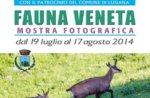 Foto-Ausstellung Flora VENETA in Lusiana, Asiago Hochebene, 19/7-8/17/2014