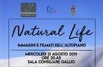 NATURAL LIFE - Bilder und Filme des Gallio Plateaus - 21. August 2019