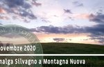 DA MALGA SILVAGNO A MONTAGNA escursione guidata naturalistica, 22 novembre 2020