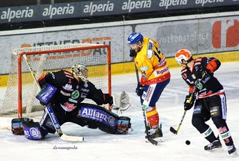 Rittern vs Asiago hockey - Foto di David S. Wassagruba