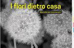 """Presentazione libro """"I fiori dietro casa"""" di Nicola Casarotto e Giovanni Ariot ad Asiago - 22 agosto 2018"""