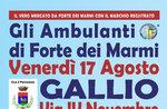Markt Hausierer von Forte dei Marmi ein Gallium-17 August 2018