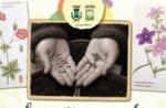 SCAMBIO SEMENTI E MERCATINO DEI FIORI, Lusiana, 29 marzo 2015, Altopiano