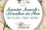 Austausch von Saatgut und Blumenmarkt in Lusiana-April 28 und 29 Altopiano di Asiago-2018