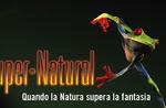 """SUPER-NATURAL"" - Enthüllungsabend im Naturalistischen Museum Asiago - 30. Juli 2019"
