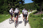Mountain Bike Altopiano Asiago
