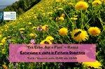"""Escursione e visita in fattoria didattica """"Tra erbe, api e fiori"""" con il Museo Naturalistico di Asiago - 10 luglio 2020"""