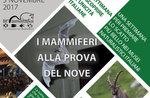 """M """"Charme-die Woche der Säugetiere im Natural History Museum von 27 Oktober bis 5. November in Asiago-2017"""