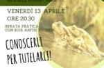 """Informationen am Abend """"VERSENKBARE"""" Leben im Naturhistorischen Museum pädagogische """"Patrizio Rigoni di Asiago-23 März 2018"""""""