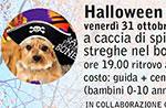 HALLOWEEN a 6 zampe al Rifugio Bar Alpino, Altopiano di Asiago, 31 ottobre 2014