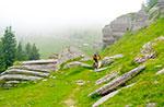 Reiseroute (MTB) Asiago-Valbella-Valle Dei Ronchi-Monte Fior (Rock City)