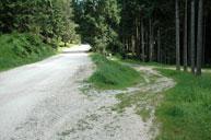 Wildhüterwanderung in Barenthal-Fassa - 16. Juli 2020