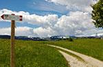 Mountainbike Route (MTB) Alte Eisenbahnstraße - Asiago Plateau