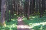 Prunno Orienteering Route - Lazzaretto
