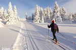 Veneto Region, clarification on the Dpcm: cross-country ski slopes can open. On the Asiago Plateau you can ski!