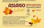 Asiago Belaubung: ein muss
