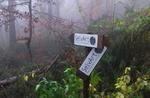 Terra-SelvArt-Fundraising für die Wiederherstellung der Park Selvart