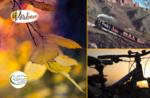E-Bike-Ausflug entlang der Strecke der alten Bahn mit Asiago Guide - 24. Oktober 2020