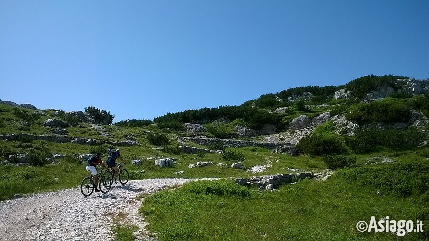 Cicloescursione in mountain bike sull 39 altopiano di asiago for Alberghi di asiago