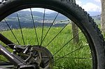 Il Prunno , la sua Reginetta dei Boschi e le Nostre Mountain Bike