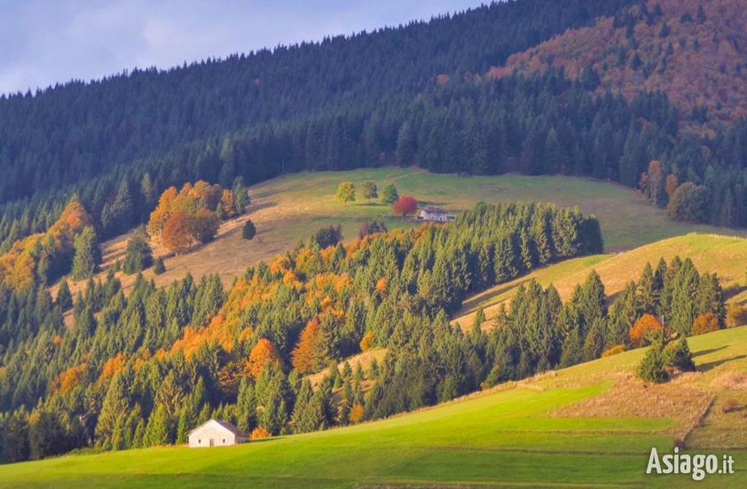 l 39 autunno sull 39 altopiano di asiago raccontato in un