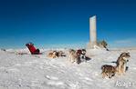 Hundeschlitten auf Monte Ortigara-Video Ausflug mit Hundeschlitten auf der Hochebene von Asiago