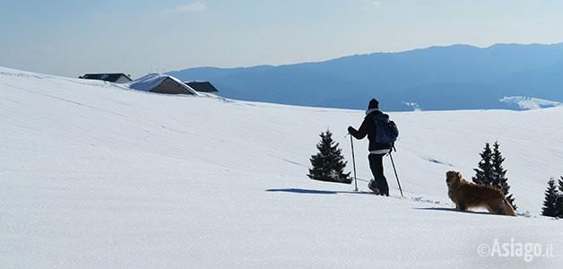 Monte Longara - Gallio