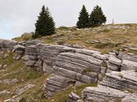 Guide altopiano citta di roccia altopiano asiago