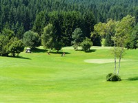 I campi da golf adiacenti all'albergo