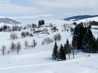 La neve sui campi da golf