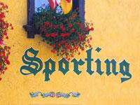 Dettaglio Sporting Residence Hotel