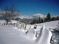 La quiete dell'inverno