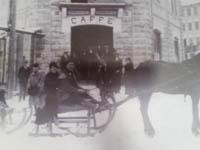 cavallo storica adler