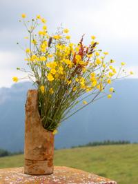 Decorazione floreale Malga Dosso di Sotto