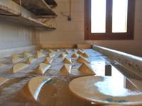 Malga Dosso di Sotto produzione formaggio Asiago DOP