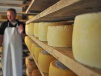 I formaggi della Malga Pian di Granezza