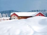 Il rifugio campolongo neve