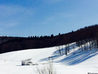 paesaggio invernale biancoia